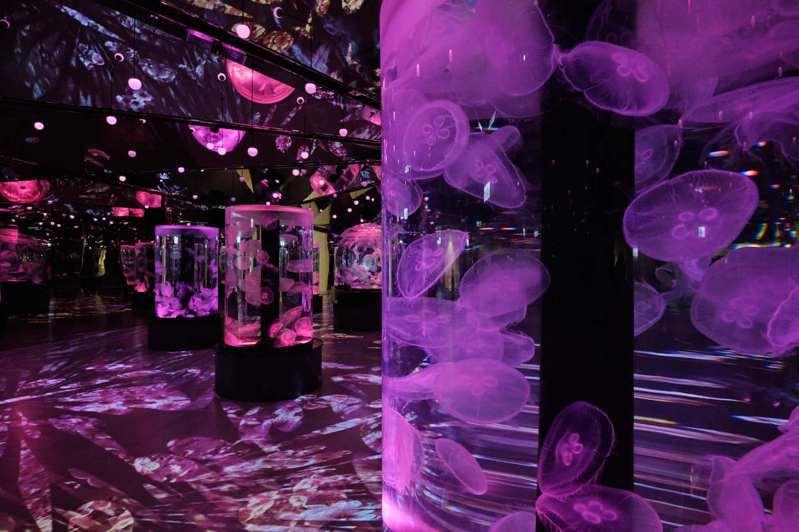 Xpark聲光效果十足的水母區。圖/置地廣場提供