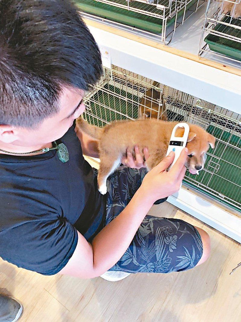 寵物店從業人員掃描晶片紀錄。圖/新北市動保處提供