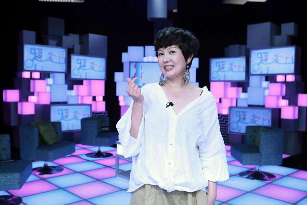 苗可麗日前上公視談話節目「36題愛上你」。圖/公視提供