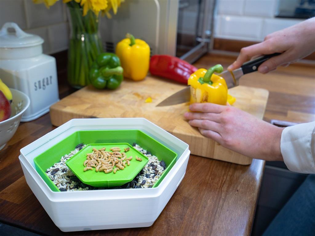 英國的新創公司「BeoBia」推出了一款名為「Re_」的昆蟲養殖容器。 圖片提供...