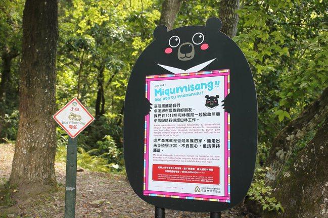 瓦拉米步道是台灣黑熊的出沒地,可見到黑熊造型的指示牌。記者陳睿中/攝影