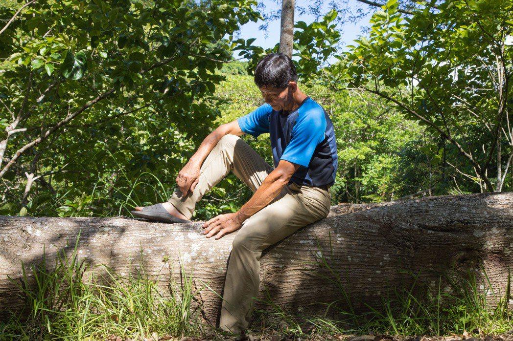 四十多年前,父親帶著賴金田種下第一顆樹,現在由他繼續守護這座山。記者許詩愷/攝影