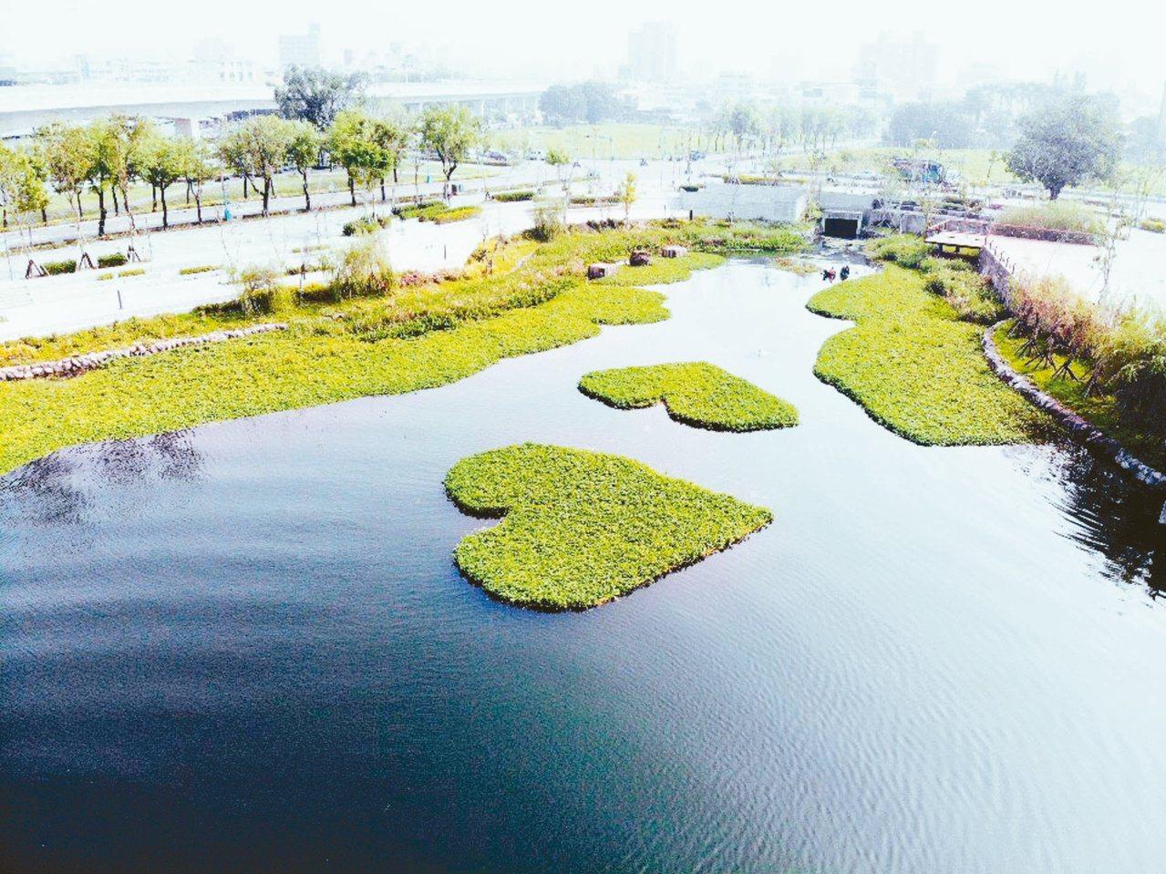 台中市東區新景點的星泉湖,號稱會呼吸的湖。 圖/台中市府提供