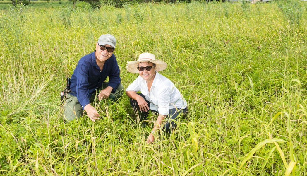 朱平(左)和陳郁敏親身投入田野生活,貫徹土地友善概念。記者陳立凱/攝影