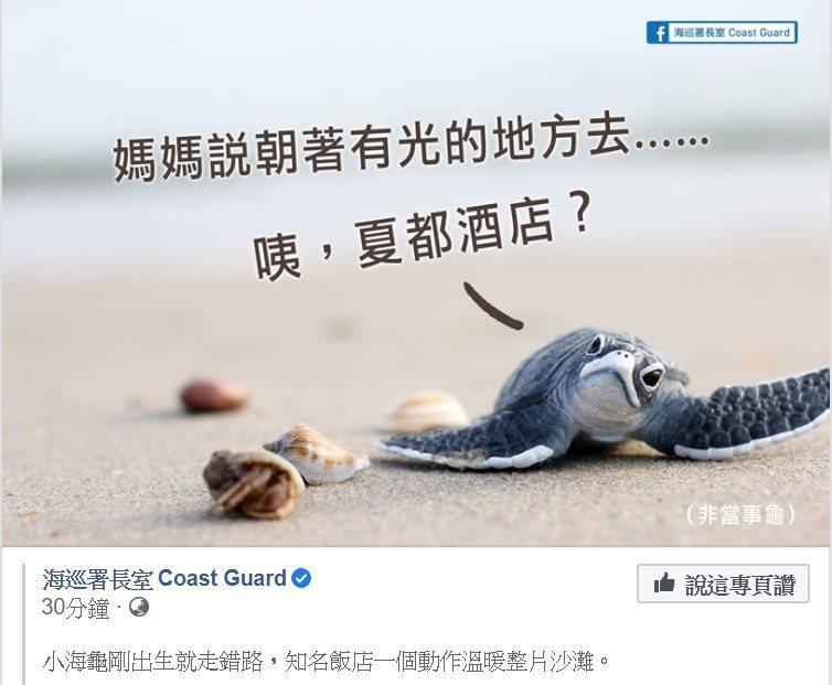海巡署昨天在「海巡署長室 Coast Guard」PO文感謝飯店調降光線,讓迷路的小海龜回到大海暖心舉動。圖/取自「海巡署長室 Coast Guard」臉書