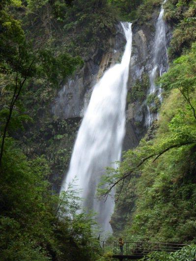 南投縣奧萬大有瀑布、吊橋、楓林區及松林區等自然景觀,享受森林浴效果佳。圖/南投林管處提供