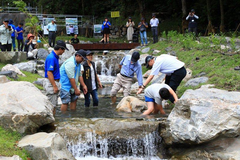 南投縣奧萬大國家森林遊樂區腦寮溪親水區,是今年夏天最大的亮點。圖/南投林管處提供