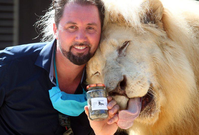 馴獅師萊西(Martin Lacey)與馬戲團獅王東加(Tonga)合影。全球新冠疫情延燒,各行各業皆面對挑戰,德國慕尼黑的克朗(Krone)馬戲團突發奇想,出售獅子的糞便以降低停業造成的虧損。路透