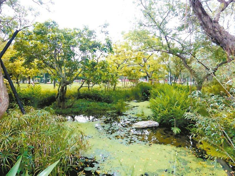 北市公園處今於大安森林公園舉辦「蔬食無痕家庭日」系列活動。圖/北市公園處提供
