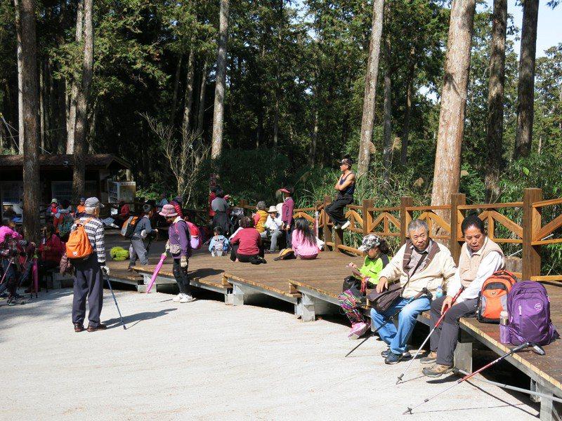 溪頭森林教育園區今年7月入園就大幅成長超過27萬人,創開園50年以來的最高紀錄。記者黑中亮/攝影