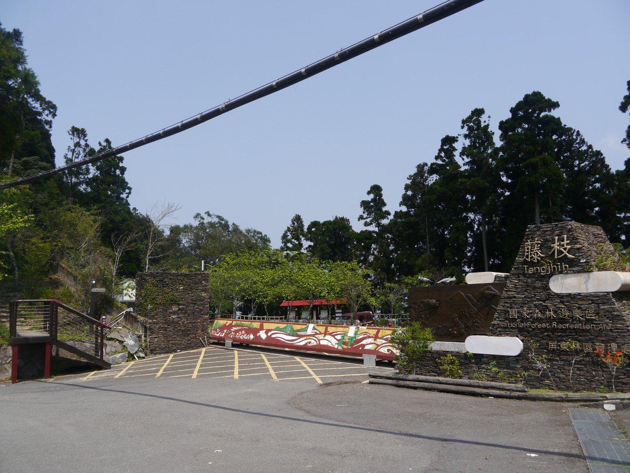 藤枝森林遊樂區今年內將會常態性開園,暫定每日開放500人入園。  圖/本報資料...