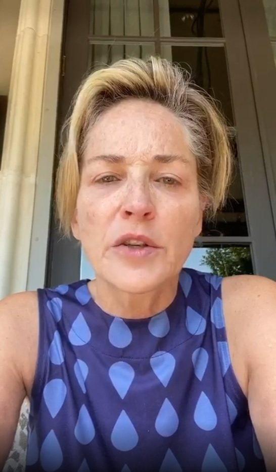 莎朗史東憂心自己妹妹患新冠肺炎。圖/摘自Instagram