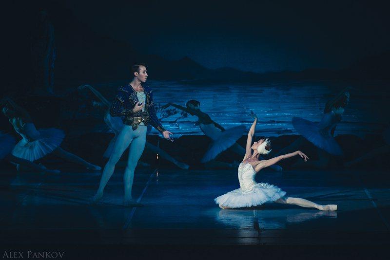 莫斯科古典芭蕾經典舞碼「天鵝湖」。圖/聯合數位文創提供
