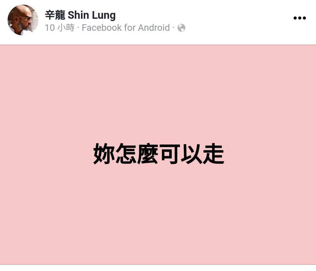 辛龍發文訴對劉真離世的哀痛。 圖/擷自辛龍臉書