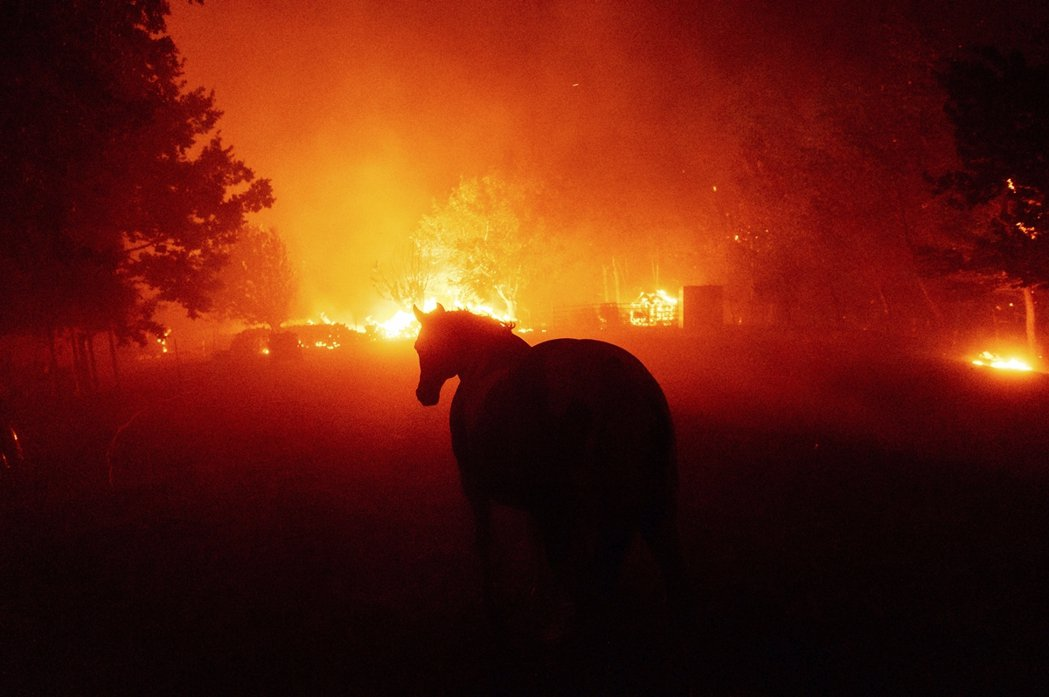 狂舞的閃電不僅造成各地至少360起火警通報,命中森林、民宅、加劇乾地的森林大火,...