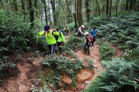 山林解禁之亂有解嗎?尋找失落的臺灣戶外文化與教育