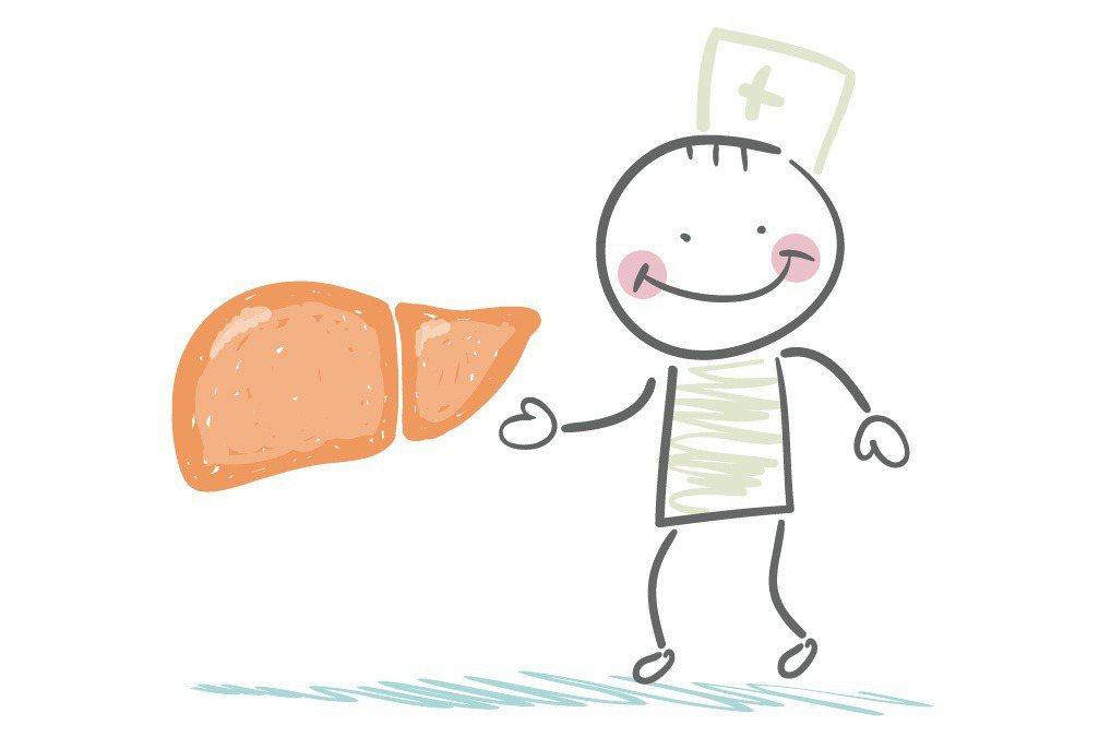 肝臟可能已經暗藏禍端而不自知,因此,養成定期檢查,好好保養就很重要。圖/ingi...