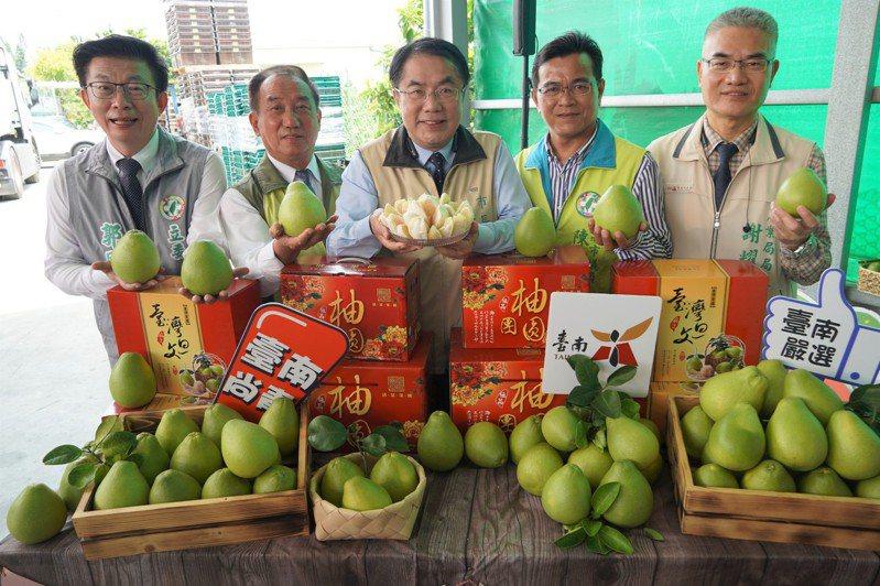 台南市長黃偉哲(中)表示,今年麻豆文旦品質好,銷售期長,內外銷及加工三箭齊發,幫柚農賺大錢。記者吳淑玲/攝影