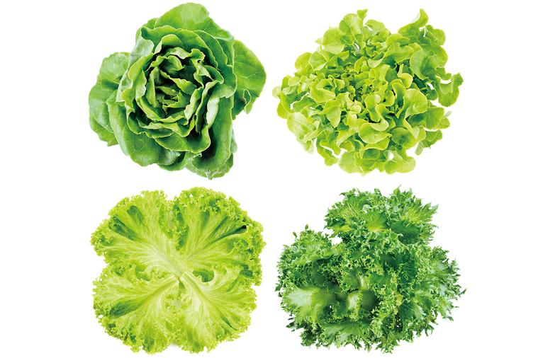 營養師提醒,生菜沙拉最多只能取代一餐,若餐餐以生菜沙拉為食,恐無法支撐人體每日所...