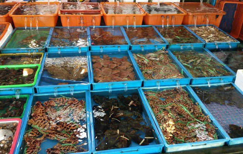 新北市石門區富基漁市海產豐富,3周的特色市集活動祭出限量優惠。圖/新北市漁業處提供
