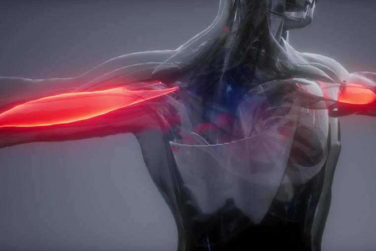 肌肉在收縮之後能恢復到原來狀態才能發揮功能,要是收縮後就維持著同一狀態的話,那麼...