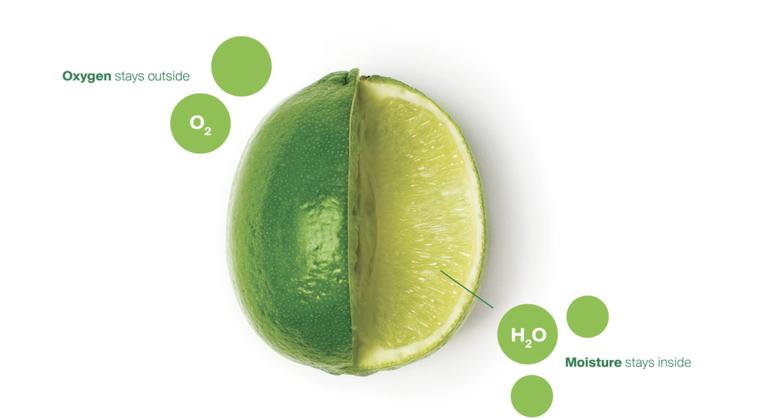 在水果表面上塗上可食用植物材料Apeel,可以減緩水分流失和氧化。 圖片提供/食...