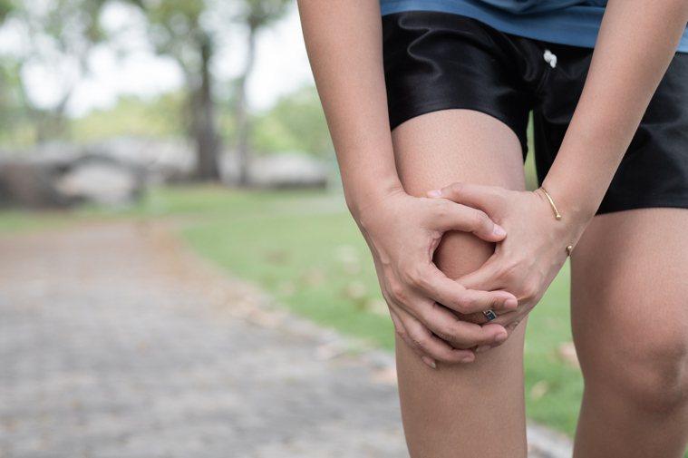 膝蓋示意圖。圖/ingimage