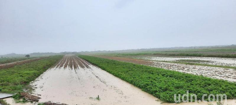 學甲頂洲農田泡水,積水待退。記者謝進盛/翻攝