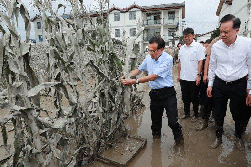 中共國務總理李克強8月20日巡視了天府之國的重慶,在視察一片被洪水淹壞的玉米田時說「裡面都爛了,你看!」圖/取自中國政府網