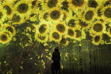 日本teamLab最新線上展:全球皆可創作,作為人們回想疫情時代的藝術品