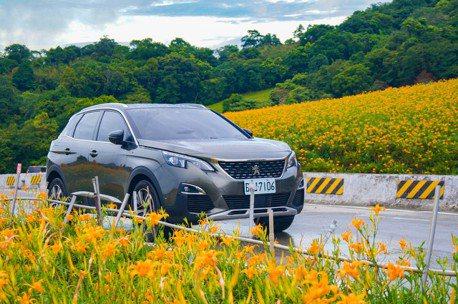 今夏國旅正夯 Peugeot 3008 1.6 GT Line勇闖花東金針花海!