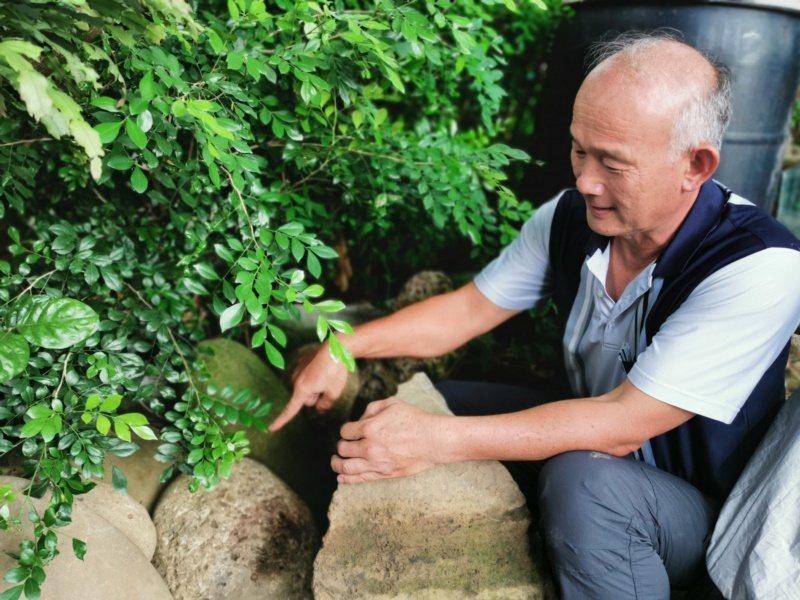 鄭育興說明石雕並非單純雕刻,還要到溪底找石頭、認識石材硬度、特色,才能創作好作品...