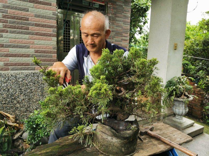 鄭育興石雕之餘還玩盆栽、種水果,強調要掌握退休生活節奏。 圖/卜敏正 攝影
