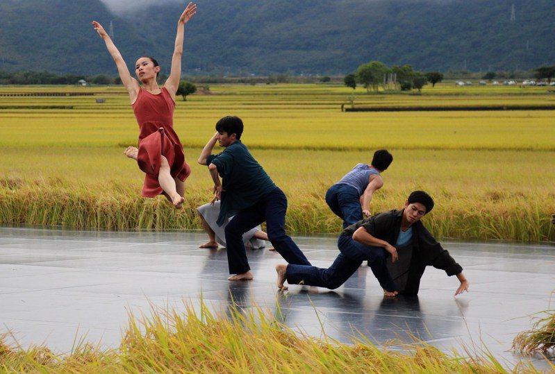 雲門舞集「稻禾」舞作在池上的金黃稻田裡舉辦公演,是池上珍貴的藝文風景。圖/聯合報系資料照片