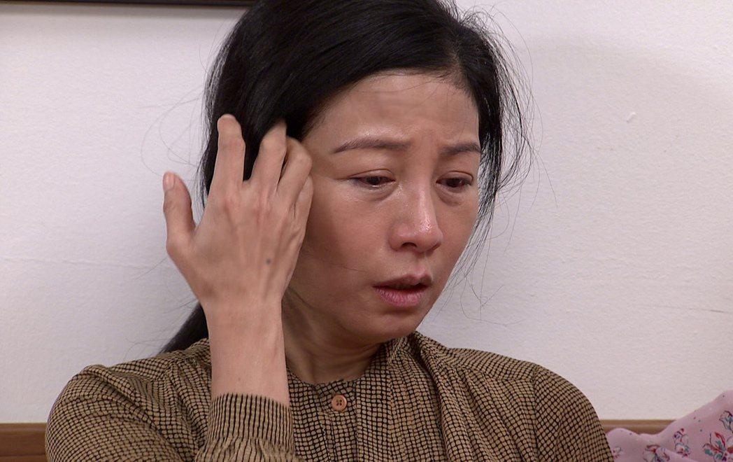 方文琳在「生生世世」中為兒擔心而憔悴。圖/台視提供