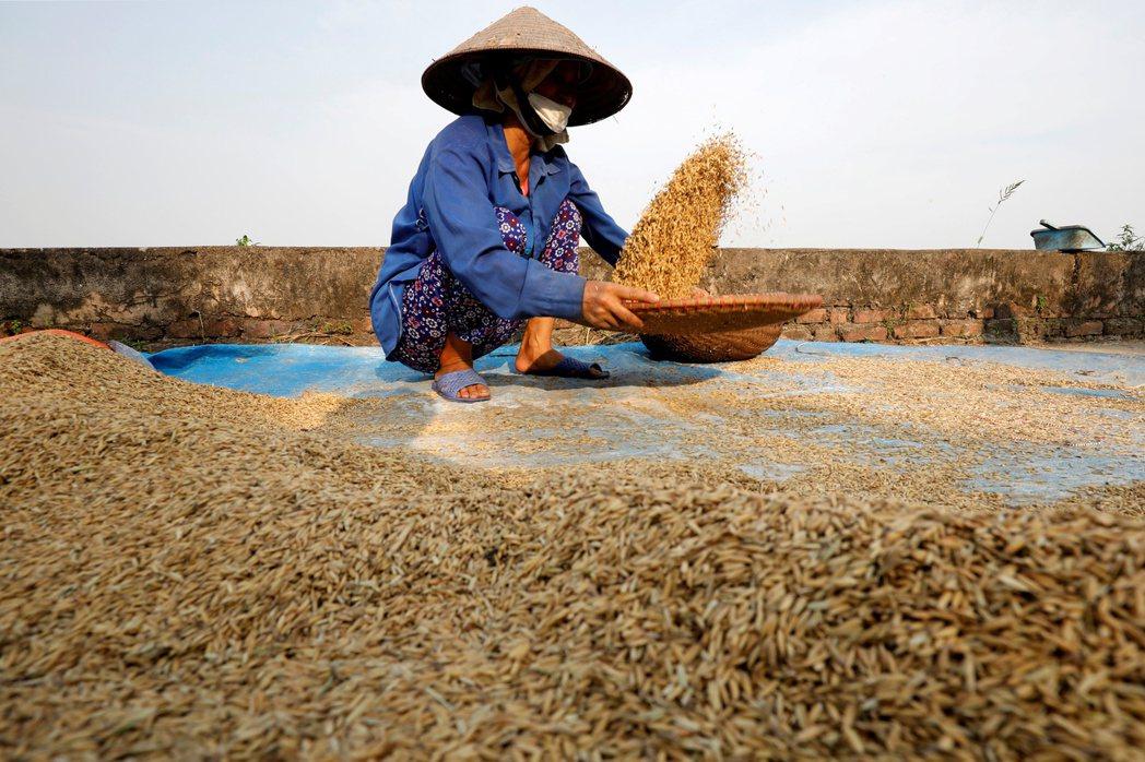 經理人看好越南內需消費、原物料股後市。(路透)