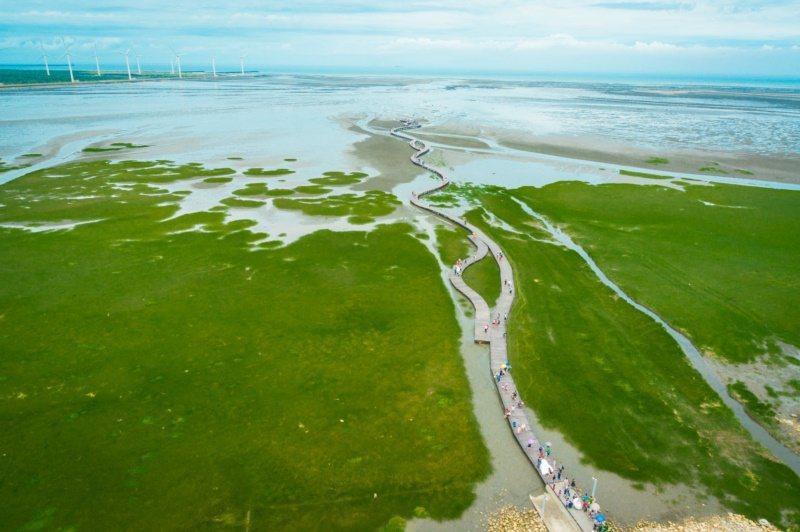 高美濕地擁有豐富的生態資源,絕美景緻,被國外網站讚為一生必遊之地。 圖/台中市政...