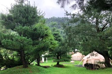 文化觀察者于國華/一瓶老松漬豆腐乳,引領探尋200棵古松林立的拂水山莊