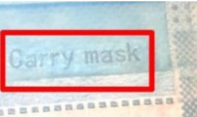 有問題的口罩,口罩本體右下角有「Carry mask」鋼印字樣。 圖/藥師公會全...