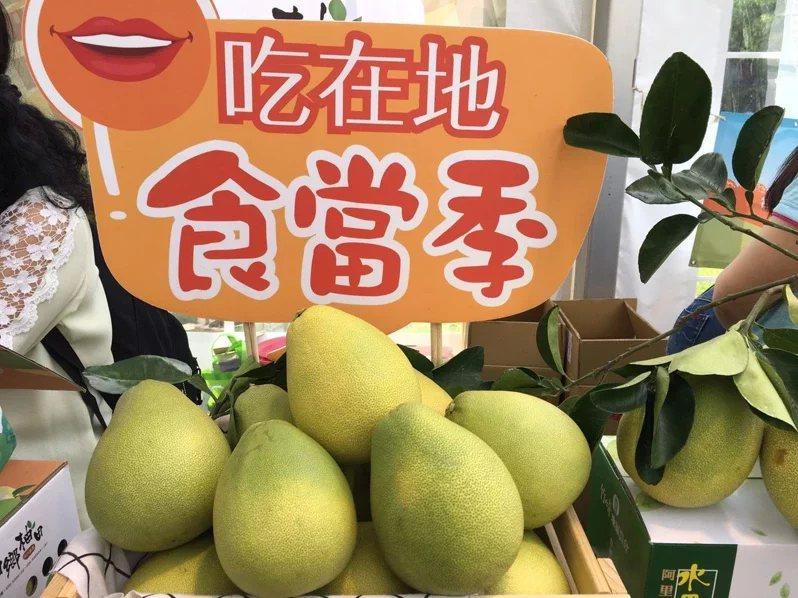 農委會今天公布柚香禮券。 圖/吳姿賢 攝影