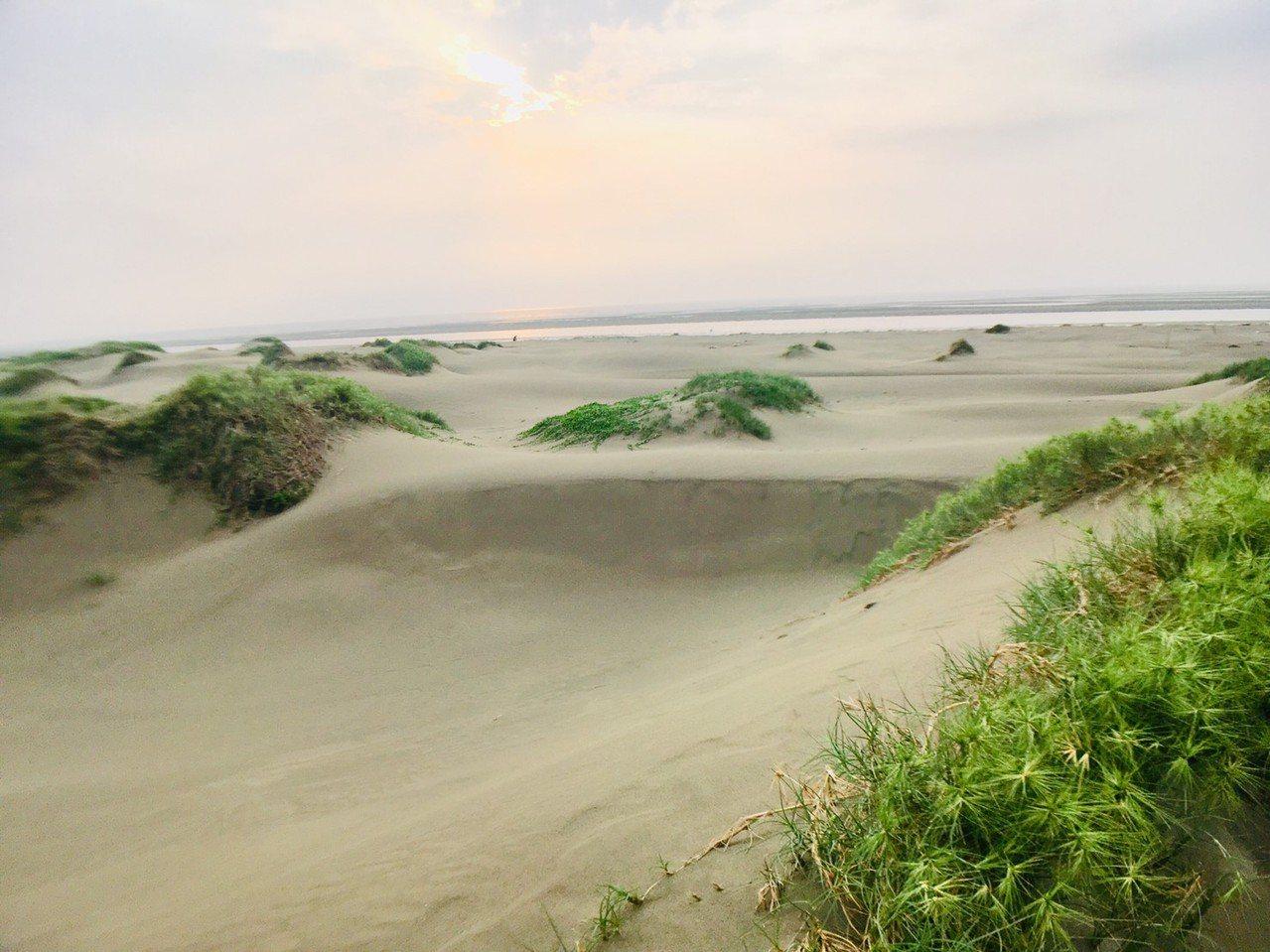 香山沙丘隱身於國家級重要濕地「香山濕地」中,政府為了保護濕地自然生態,禁止遊客進...