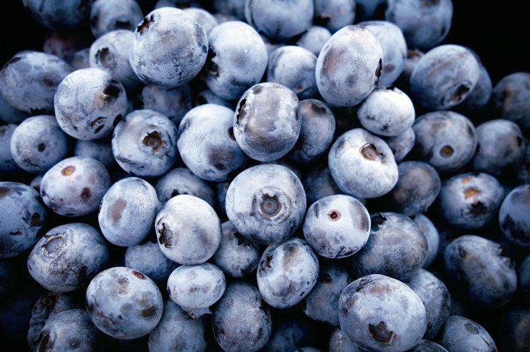 藍莓 圖╱Pixbay
