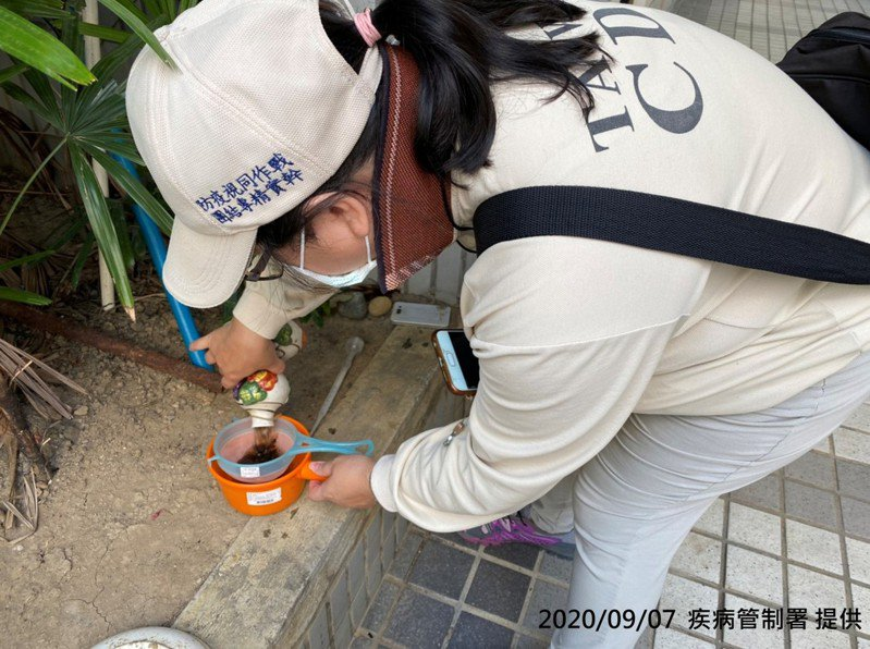 疾管署防疫人員,於桃園市桃園區進行孳生源清除與病媒蚊密度調查。圖/疾管署提供