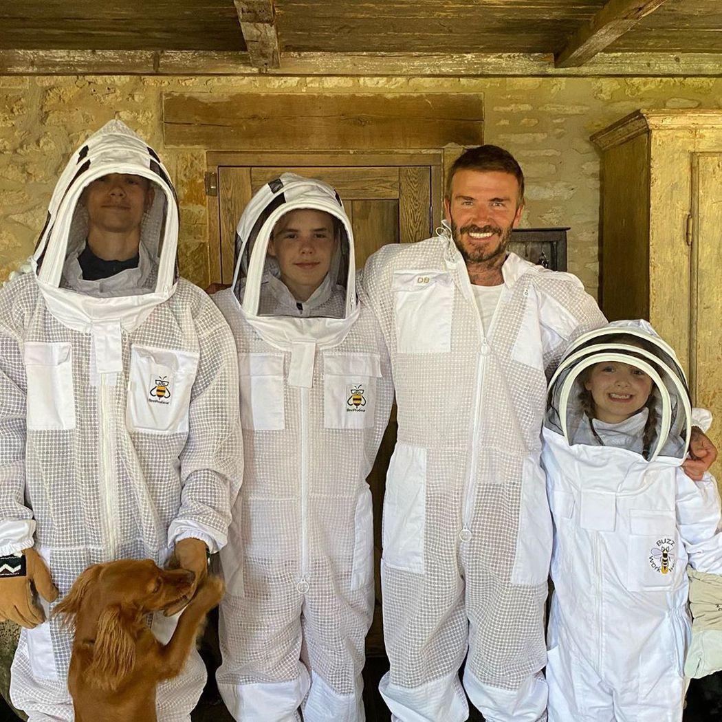 大衛貝克漢(右二)在家中弄蜂巢,幾個小孩皆穿上防螫的衣服。圖/摘自Instagr...