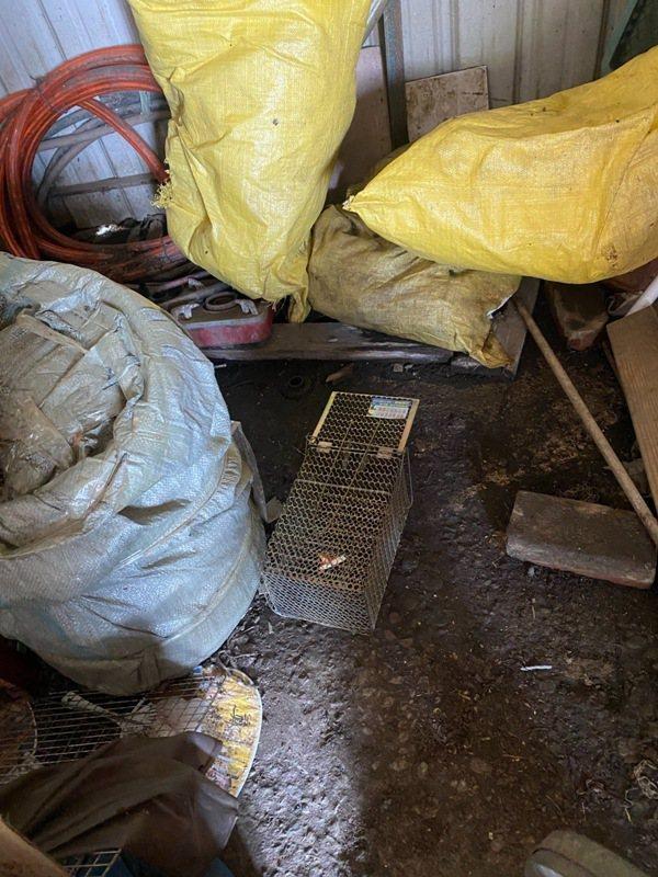 屏東縣政府衛生局獲報後,立刻針對個案居住地周圍捕鼠、滅鼠及環境消毒等防治工作。記...