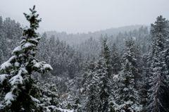 破紀錄!高溫37度直墜到零下 美科州二天內歷經酷暑及降雪