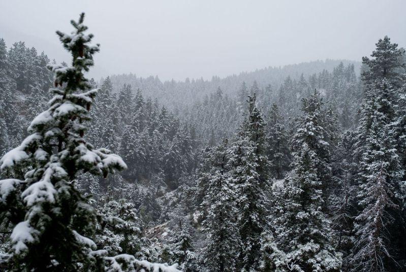 科羅拉多州先是經歷史上九月最高溫,兩天內又降下史上最早一場初雪。圖/法新社