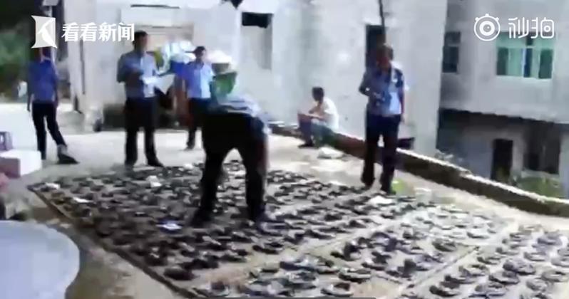 大陸貴州省有民眾舉報鄰居藏匿大量野生動物,直到相關單位前往稽查時,竟翻出277條蛇類屍體、4條活蛇。 圖截自《看看新聞》