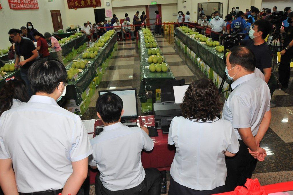 八里區第29屆文旦柚評鑑比賽採電腦化作業。八里區農會/提供