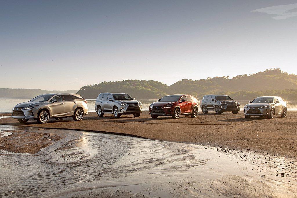現行Lexus旗下SUV作品共有6款,車身尺碼從小到大分別為UX、NX、RX、R...